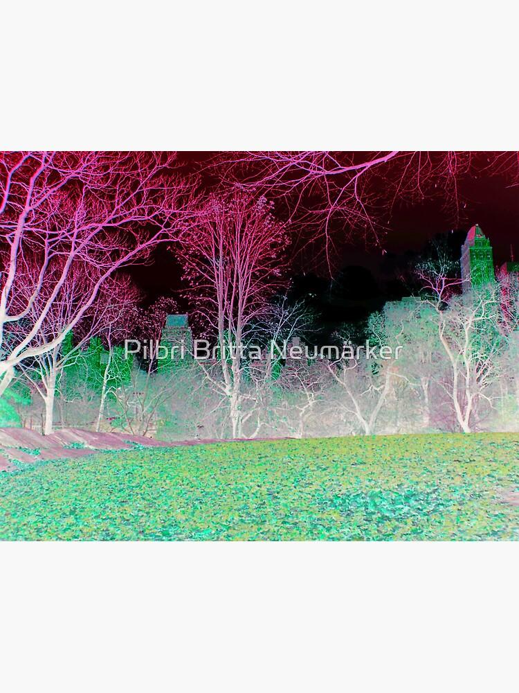 Central Park New York grün von pilbri2018