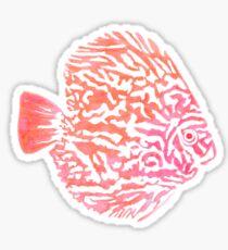 Discus fish Sticker