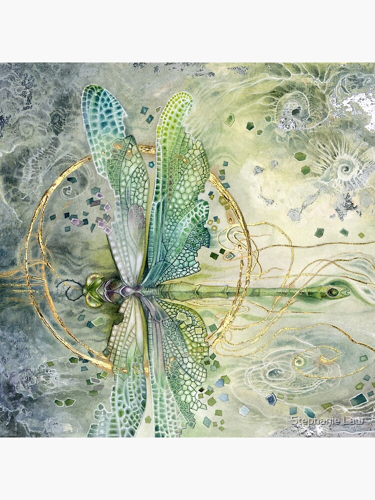 Beautiful Enchanted Dragonfly  by stephlaw