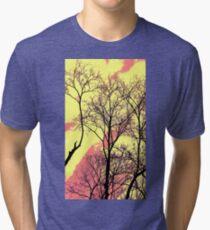 Polarized Sun Tri-blend T-Shirt