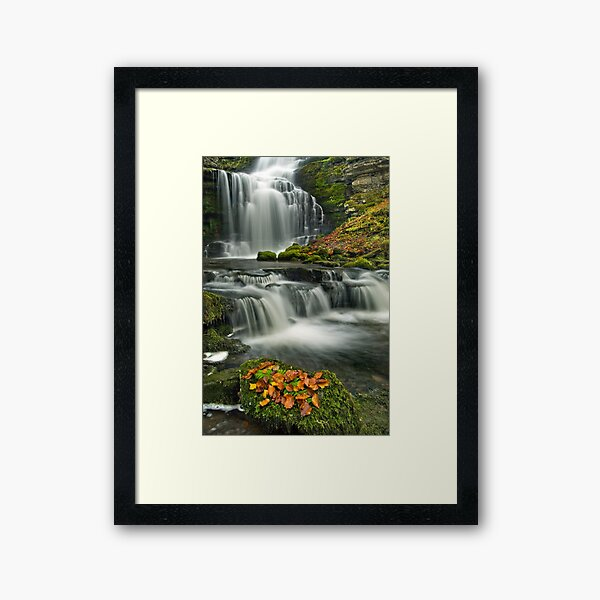 Scalebar Force, Settle Framed Art Print