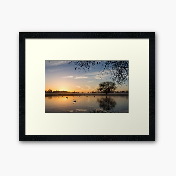 Sunrise at Bushy Park Framed Art Print