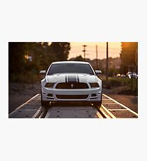 Boss Mustang Photographic Print