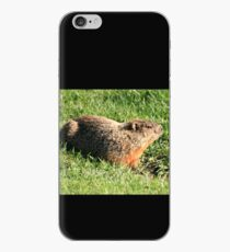 Marmotte iPhone Case