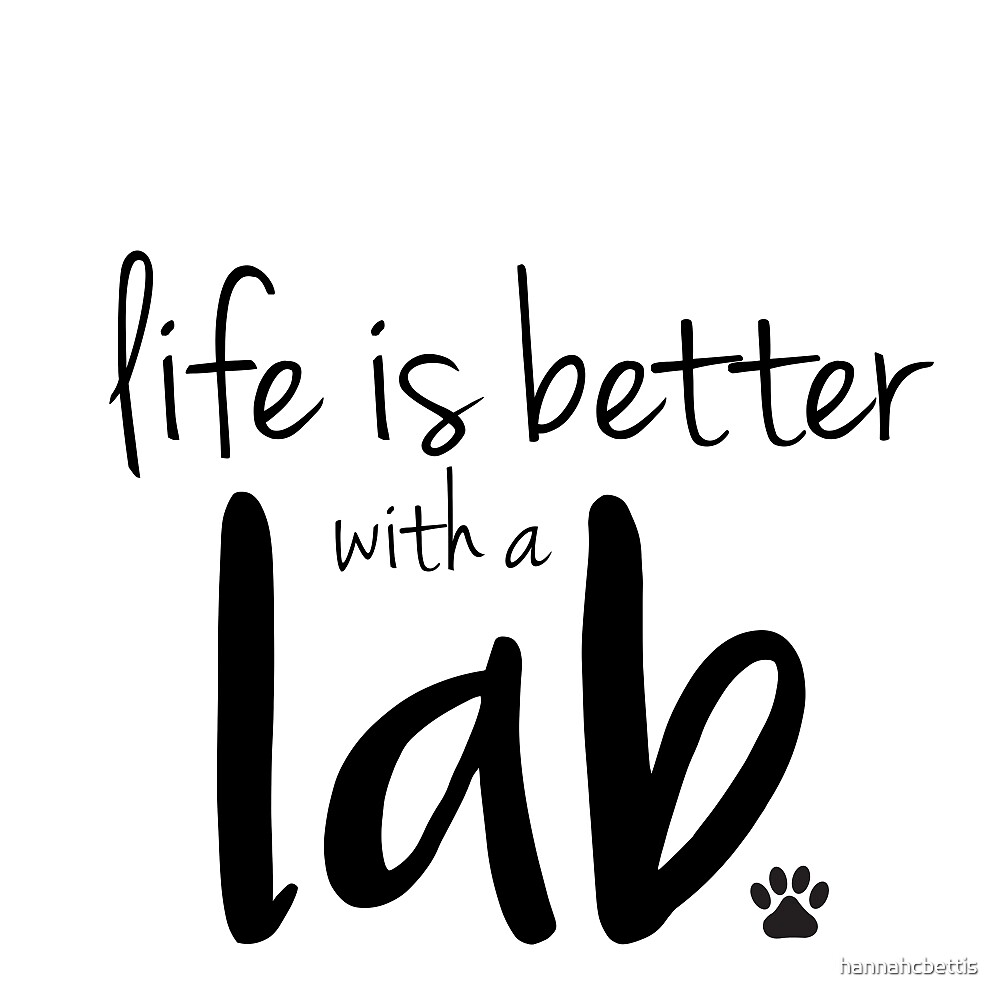 life is better with a lab by hannahcbettis