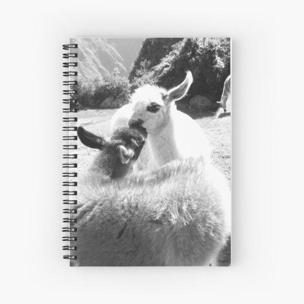 Llama Love - Machu Picchu Spiral Notebook