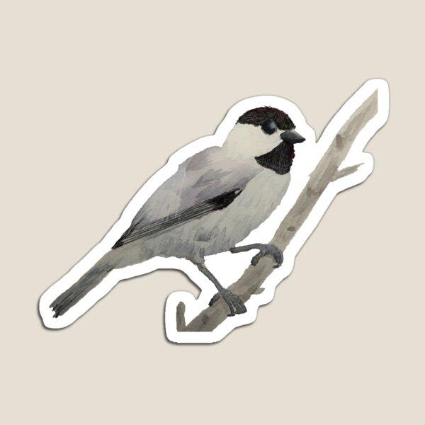 Watercolor Chickadee Bird on a Stick Magnet