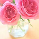 Pink roses by SarahMinchin