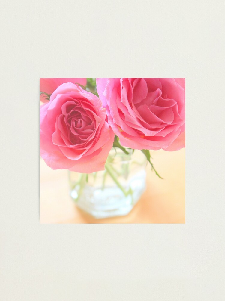 Alternate view of Pink roses Photographic Print