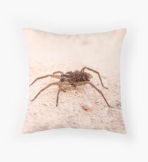 Wolf spider (Family Lycosidae) on sand Throw Pillow