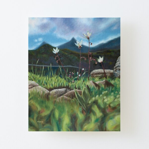 Heaven and Earth Canvas Mounted Print