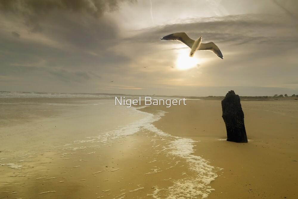 Walberswick Beach by Nigel Bangert