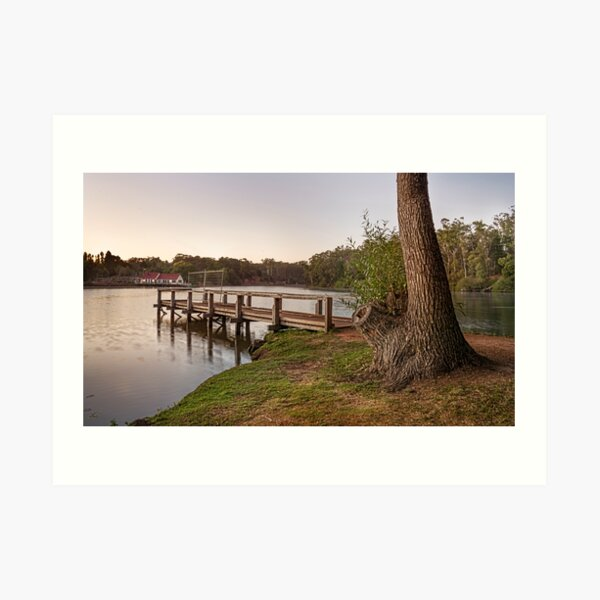 First Light Lake Daylesford Art Print