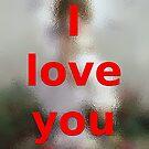 I love you by Dulcina
