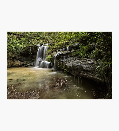 Waterfall Oasis Photographic Print