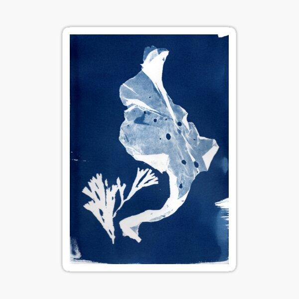 untitled cyanotype Sticker
