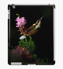 alert iPad Case/Skin