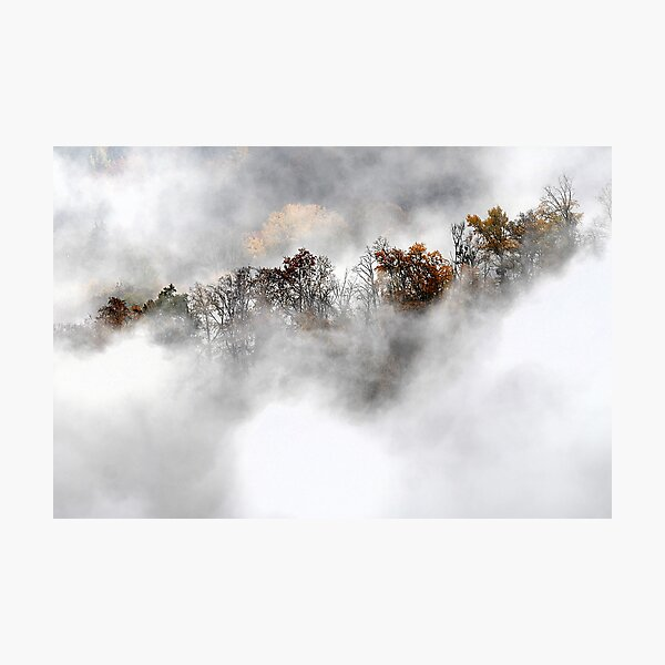 Trees in the clouds 1 Photographic Print