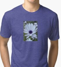 White Osteospermum Flower Daisy With Purple Hue Tri-blend T-Shirt