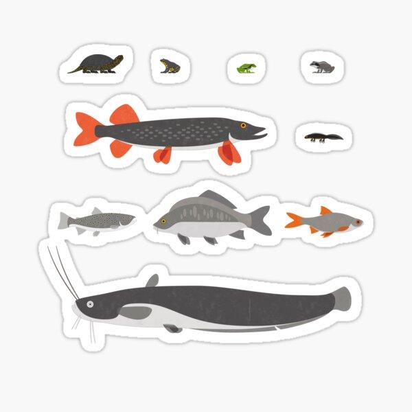 Common Water Animals (Englisch) Sticker