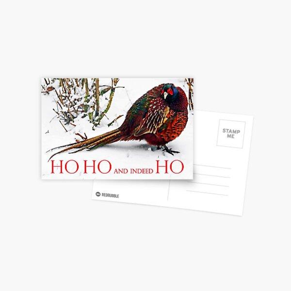 HO HO HO? Christmas 2021 - Grumpy Pheasant Postcard