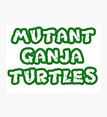 Mutant Ninja Turtles Weed Photographic Print
