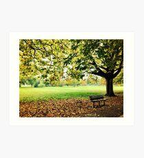 Autumn in Tooting Common Art Print