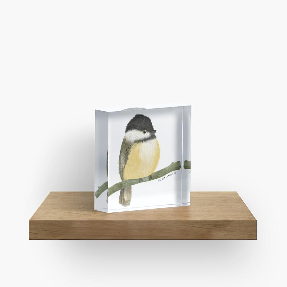 Black capped chickadee bird Acrylic Block