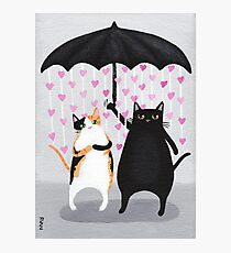 Love Rains Down Cats Photographic Print