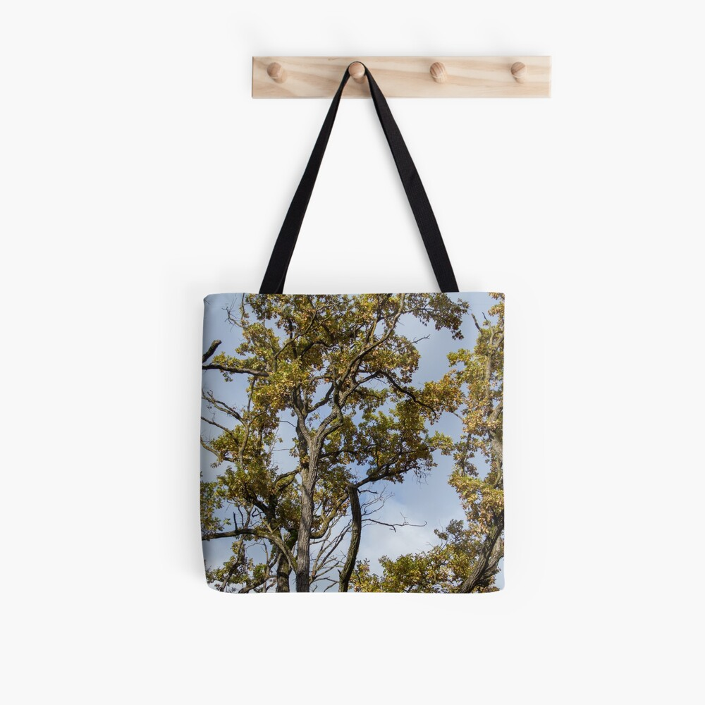 Forest scenery, seen from bellow, clouds in the sky, Autumn, original Tote Bag