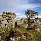 Holwell Tor auf Dartmoor von peteton