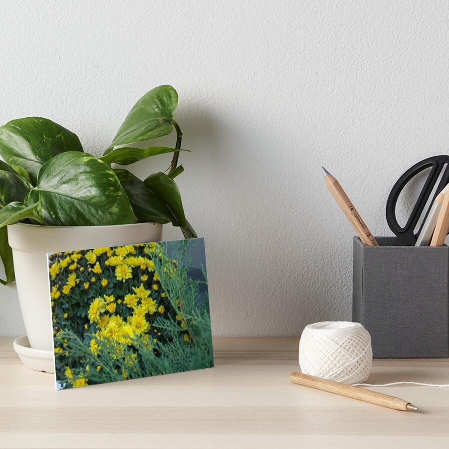 Floral Autumn arrangement. Chrysanthemums, yellow and dark purple, red Art Board Print
