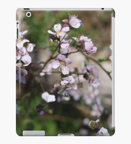Diplopeltis hueglii (2) iPad Case/Skin