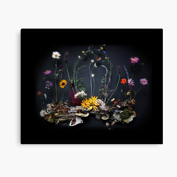 Evening Niche Canvas Print