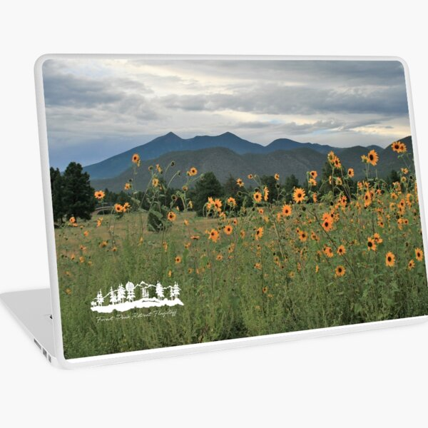 Sunflowers from Forest Peak Retreat - From ccnow.info Laptop Skin