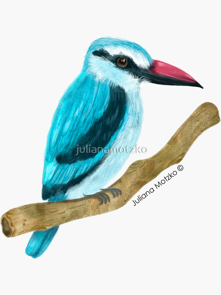Woodland Kingfisher by julianamotzko