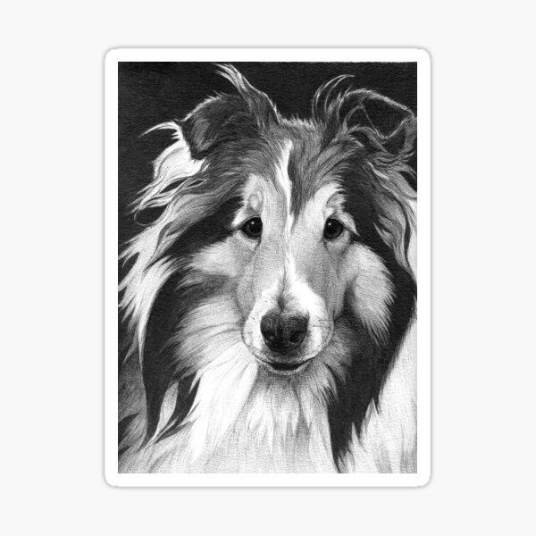 LUCY/ Sheltie Sticker