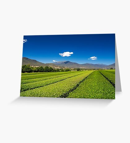 Tea in the Valley Greeting Card