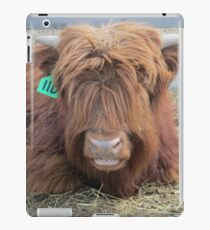 Geronimo  20 April 2015 iPad Case/Skin