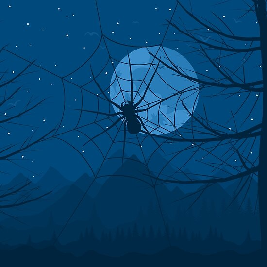 Spider at night by Aleksander1
