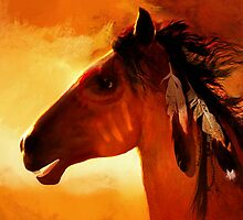 Apache'... by Valerie Anne Kelly