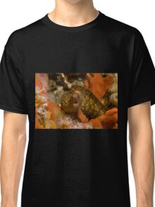 Sieve-Patterned Moray Classic T-Shirt