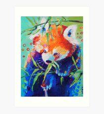 Colorful Red Panda Art Print