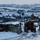 Red Tractor in Snow by Annette Brown