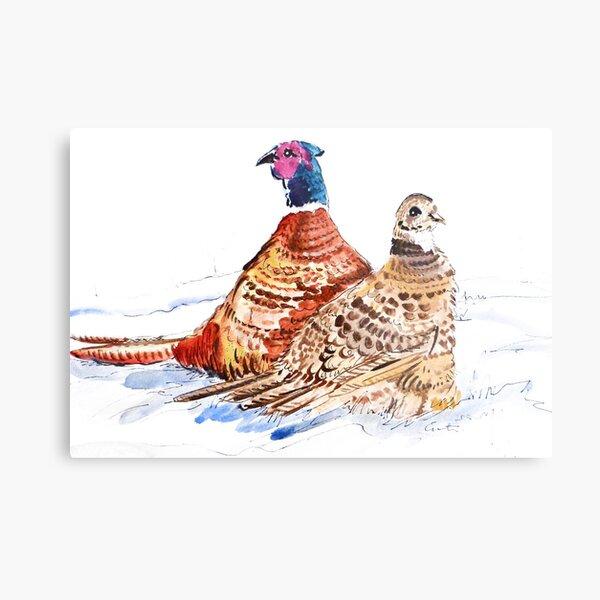 Snowy pheasants Metal Print