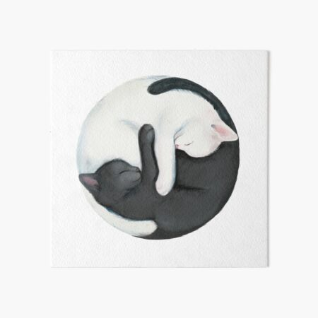Yin Yang Balancing Cats Art Board Print