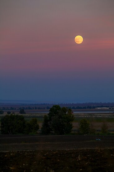 full Moon rising over the Jezreel Valley, Israel  by PhotoStock-Isra