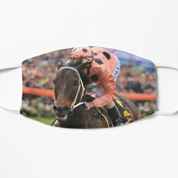 Champion Australian racehorse Black Caviar. Flat Mask