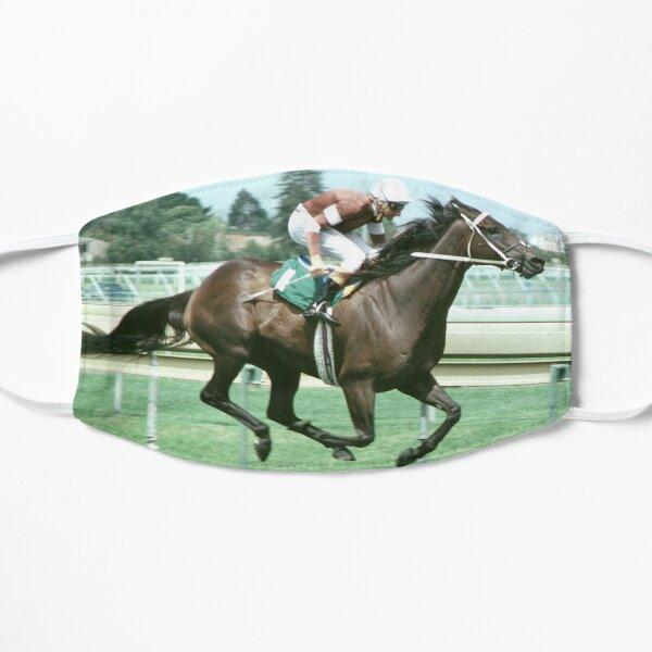 Champion Australian racehorse Vo Rogue. Flat Mask