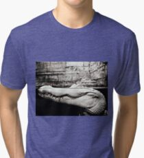 Albino Alligator Photography  Tri-blend T-Shirt